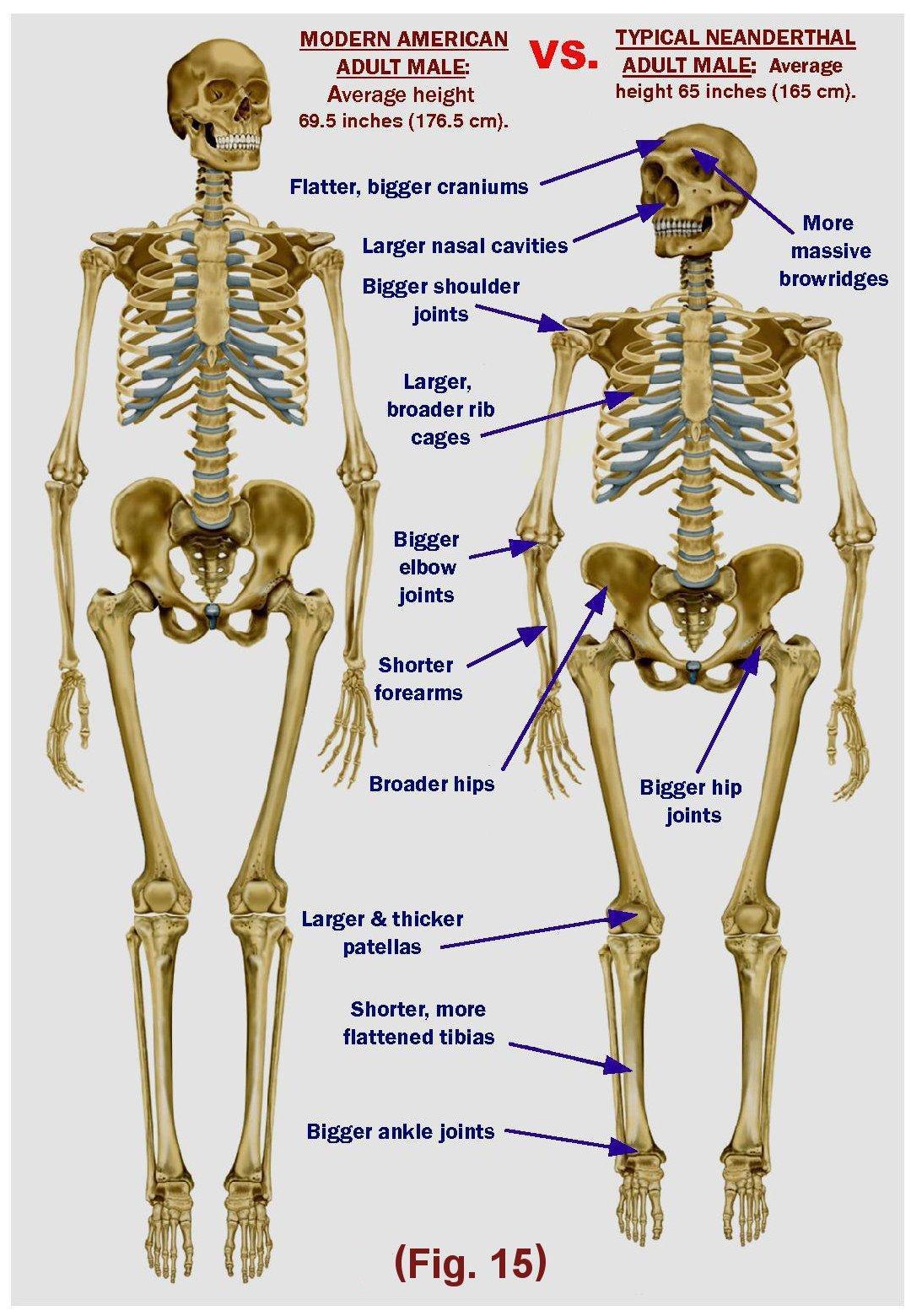 Figure-15__Neanderthal__Cave___JPEG